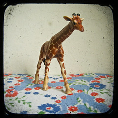 Long Legs (_cassia_) Tags: flowers blue red brown white blur animal shop vintage bigeyes pattern forsale retro giraffe etsy dust longlegs imperfection ttv throughtheviewfinder cassiabeck cassiabeckcom