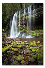 Russell Falls, Mt Field National Park, Tasmania, Australia (Matthew Stewart | Photographer) Tags: park green water field waterfall moss rocks mt russell australia falls national waterfalls tasmania mossy 2011