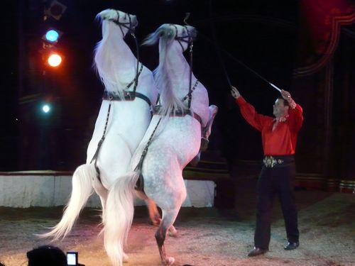 Zirkus 2