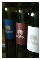 Salcheto Wine Tasting