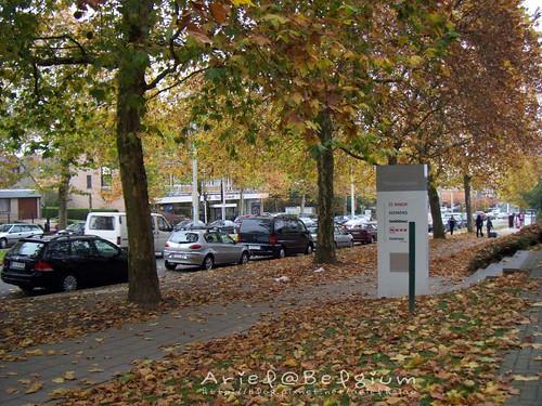 Belgium Autumn