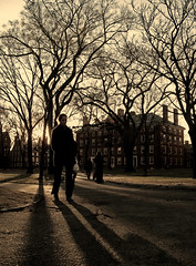 winter in harvard yard (sandcastlematt) Tags: winter cambridge sunset woman shadows candid massachusetts harvard harvardyard harvarduniversity tinted bostonist itscold universalhub