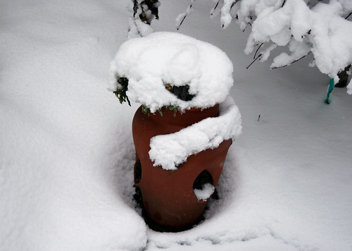 Strawberry planter covered in snow