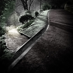 The Choice. (jimbodownie) Tags: gardens paths winter sun hourofthediamondlight