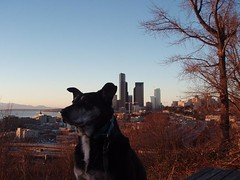 Tica enjoying Jose Rizal Park back in January. Photo by melissajonas.