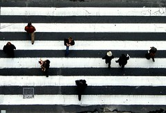Passing by                                        [Music is Everywhere (Part II)] (Sandra_R) Tags: life street city light people white black portugal outdoors exterior lisboa lisbon stripes zebra crosswalk urbanscenes lx elevadordesantajusta