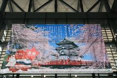 IMG_0883 (shinyai) Tags: japan aomori hirosaki