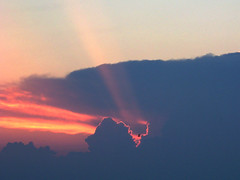 Caught in The High Beams (cphilruns over a quarter million views) Tags: light clouds sunrise seagull rays beams