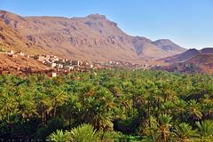 The valley on the way to Sahara (T Ξ Ξ J Ξ) Tags: morocco atlasmountainsroad d750 nikkor teeje nikon2470mmf28 valley village atlas mountain