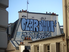 parisian rooftop (lepublicnme) Tags: streetart paris france rooftop graffiti may roller 2011