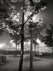 (-Antoine-) Tags: park trees urban canada tree nature station fog night subway fuji montral metro quebec montreal arbres qubec finepix nuit arbre parc brume foogy metropark metroparc mtro parcex parkextension parcextension parkex brumeux mtroparc antoinerouleau
