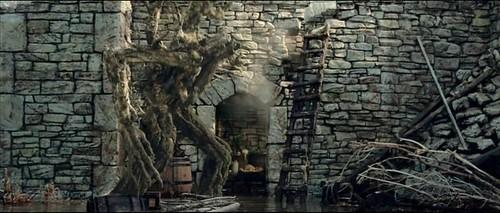Treebeard avance_erdr57