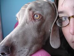 Casey & Me 10/28/07