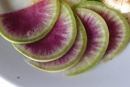 vibrant radishes