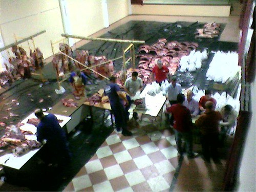 Reparto de carne 2007