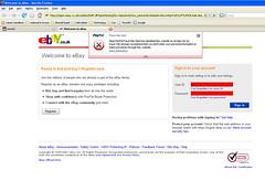 ebay fraud confusion