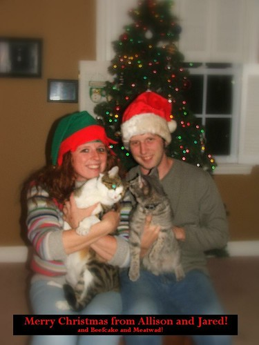 This was Supposed to be my Christmas Card.