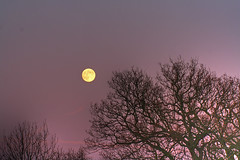 Full Moon HDR