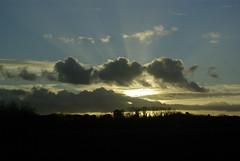 Sunset sur les Landes
