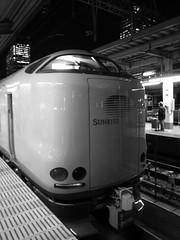Sunrise Izumo