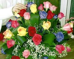 """RAMO DE FLORES"" (VRNU) Tags: rosas musictomyeyes ramodeflores vrnu misfavoritosinvitacin floresporlapaz andromeda50 score1to20 giveme5awardthenext5pictures"