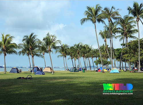 Camping at East Coast Park