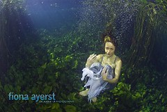 Mermaid at Marico (Fiona Ayerst) Tags: water underwater fresh lilypads freshwater