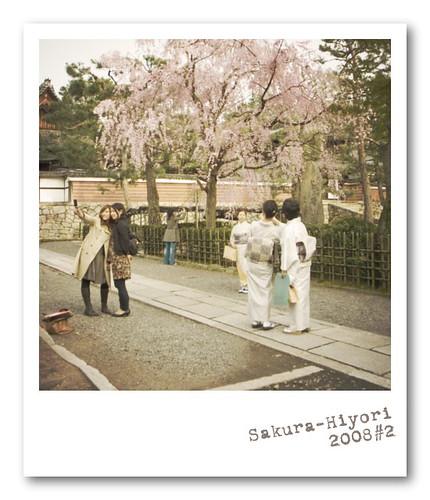 R0013706 : Sakura-Hiyori 2008 #2