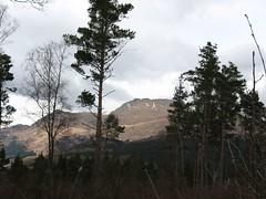 Ben Lomond thru the trees2 (Liam42) Tags: benlomond lochlomond westhighlandway tyndrum conichill arrocharalps benvorlich benvane bennarnain
