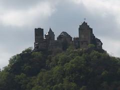 Rhine River Apr 08 052 (MurphMutt) Tags: castle germany rhineriver