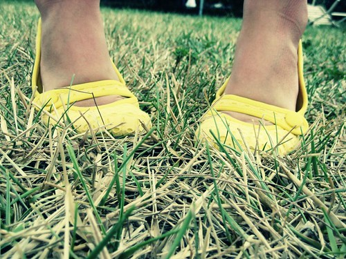 169/365 : Dead Grass, New Shoes