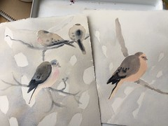 Doves with Snow Bobs (Handwork Naturals) Tags: edenscovillehart