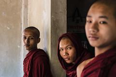 3 Monaci (Lou Casanova) Tags: 2016 2017 birmania chinatown leicasl copia dicembre mandalay myanmar nbagan yangon