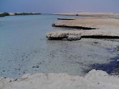 laguna delle mangrovie