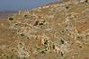 La ciutat dels morts: necròpolis de Cirene (2)