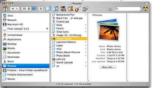 NeaseTech: iLife '08 101: Manage Your iPhoto '08 Library