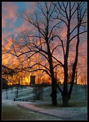 Sunrise at Sinebrychoff Park ([ Petri ]) Tags: morning winter sunrise finland helsinki frost sinebrychoff koffinpuisto wowiekazowie top20finland