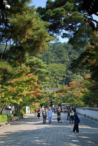 Tetsugakunomichi 05.jpg