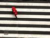 To Paulete and Zé Bóia (RiCArdO JorGe FidALGo) Tags: street portugal lisboa sony rua ruadoouro dsch2 fidalgo72 ricardofidalgo ricardofidalgoakafidalgo72