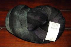 Blue Moon Fiber Arts, Laci2008-01-18 20-50-59_Edited