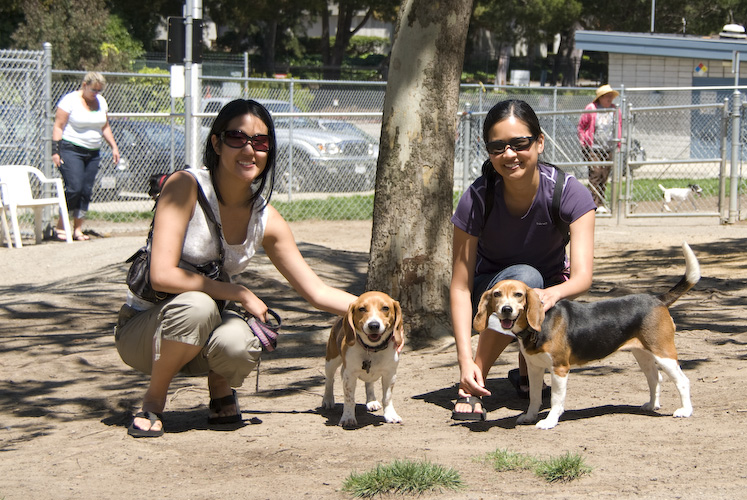 Lee's with the Beagles