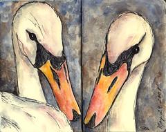 Swans (studio318) Tags: moleskine nature birds ink watercolor sketch drawing mixedmedia sketchbook swans visualjournal artjournal