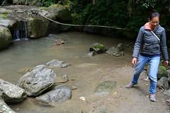 Fetching a Stick (Bob Hawley) Tags: longfongwaterfall zhongliaotownship nikond7100 nantoucounty nikon2870mmf3545afd asia taiwan outdoors nature forest trees playing water sticks people
