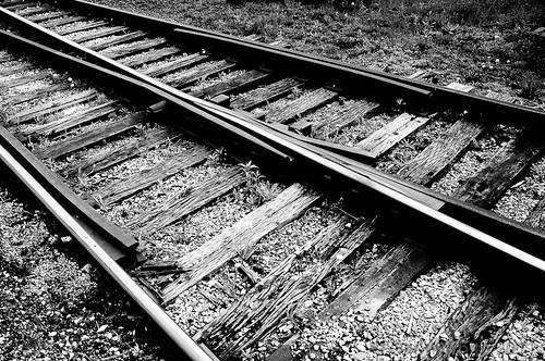 Steel Rails 2011 setup 074