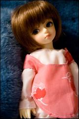 Ru (baroqueboudoir) Tags: cute girl canon pumpkin anne 350d doll dolls tiny canon350d littlegirl bjd dollfie volks ru abjd mueca 1740l balljointeddoll canon1740l yosd yosdanne 26cm