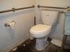 Toilet Paper & The Ugh Bathroom by Squirrel Junkie