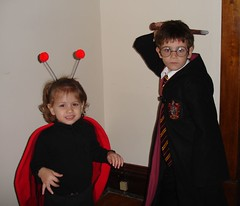 The Ladybug and Harry Potter