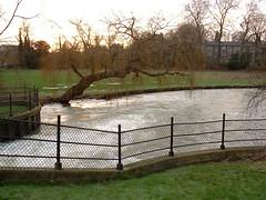 Cambridge (Chris Bloom) Tags: 2003 uk greatbritain winter cambridge england cold ice freezing icy unitedkingdon