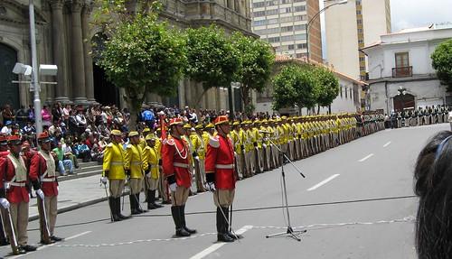 colorados amarilos de Bolivia