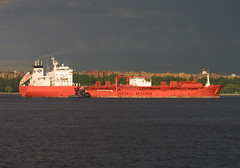 BOW CARDINAL in New York, USA. June, 2005 (Tom Turner - SeaTeamImages / AirTeamImages) Tags: nyc red newyork port bay harbor marine ship cardinal harbour transport pony maritime bow transportation bigapple tanker chemical tomturner odfjell seachem odfjellseachem 9114244 bowcardinal